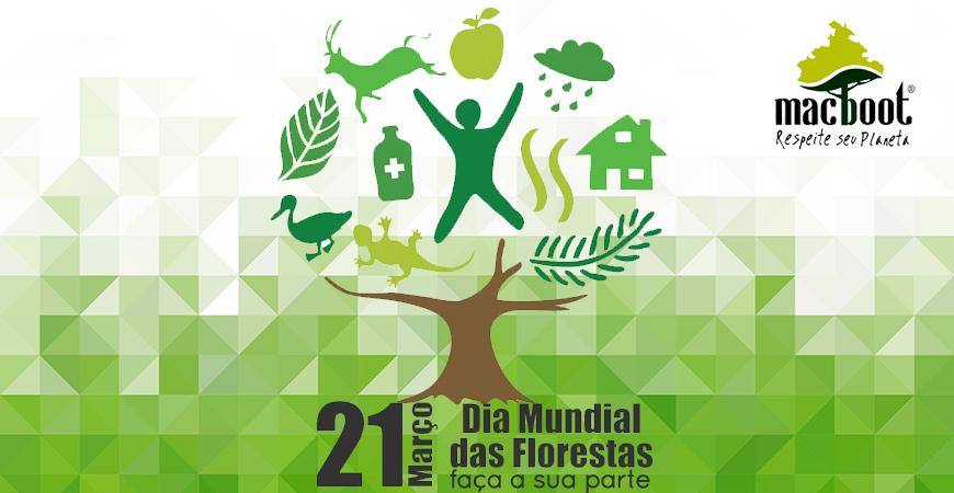 Dia Internacional Da Floresta Frases E Música Para