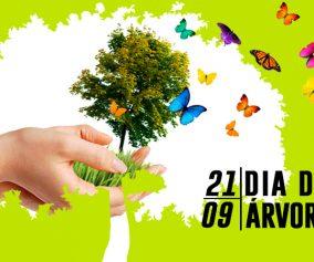 Dia da árvore: curiosidades e origem da data
