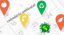 Datas Comemorativas relacionadas ao Meio Ambiente