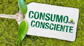 Dia do Consumo Consciente: algumas reflexões e curiosidades